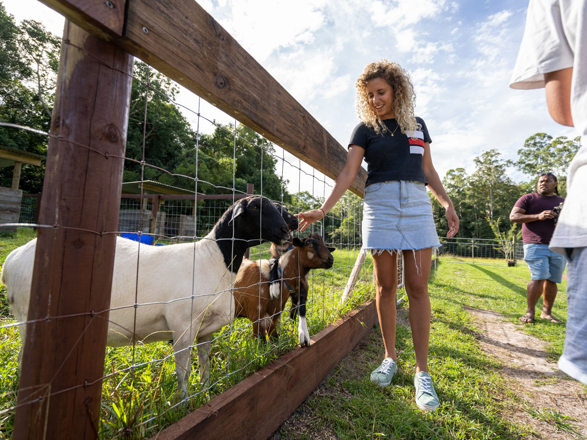 Smiling lady petting goats at the fence